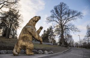 Зоопарк Хельсинки Korkeasaari