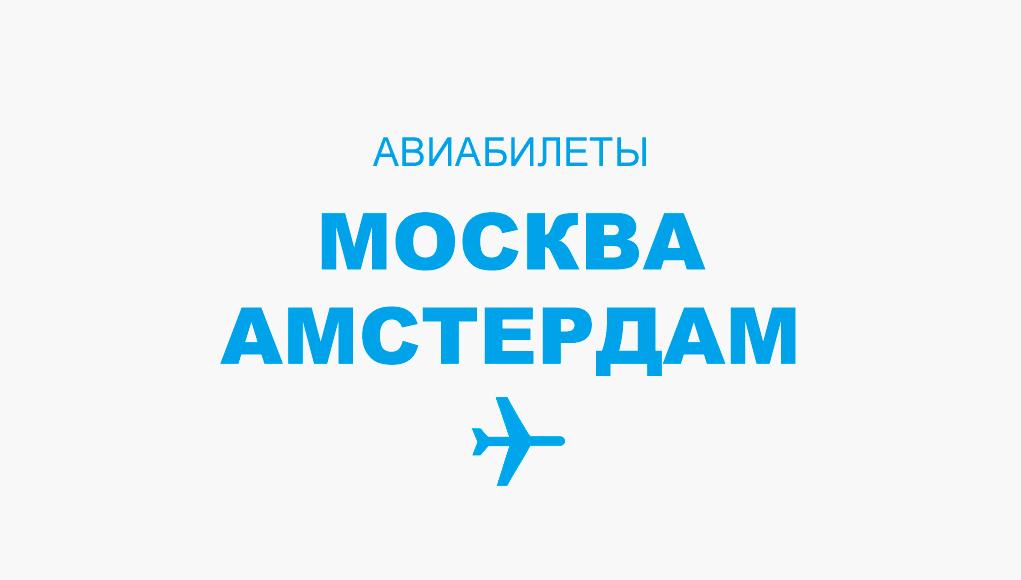 Авиабилеты Москва - Амстердам прямой рейс, расписание, цена