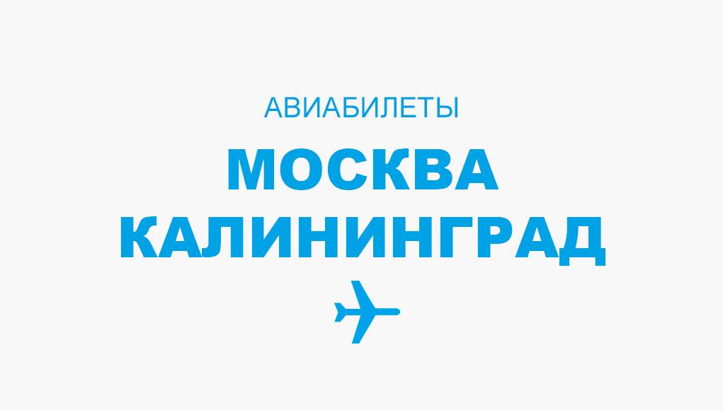 купить билеты на самолет калининград москва аэрофлот